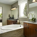 Sterling Ranch Canyon Master Bathroom