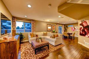 4514 Vindaloo Dr Castle Rock Large 021 Lower Level Family Room 1499x1000 72dpi
