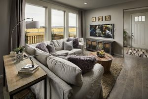Meadows Paired Walnut Family Room