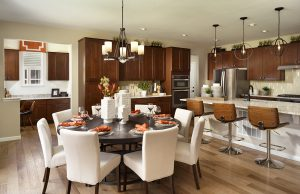 Sterling Ranch Canyon Kitchen 1