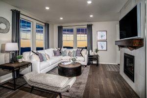 Homestead Hills.willow.living Room