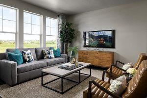 Kb Terrain Ambience Family Room