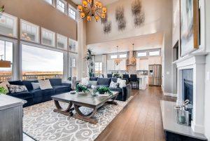 8750 Red Primrose St Franktown Large 005 6 Living Room 1496x1000 72dpi