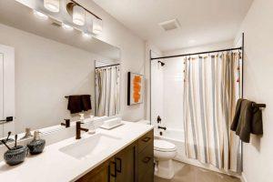 925 Delechant Dr Erie Co 80516 Small 034 024 Lower Level Bathroom 666x444 72dpi