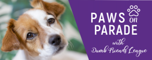 Paws On Parade Ddfl Event Header