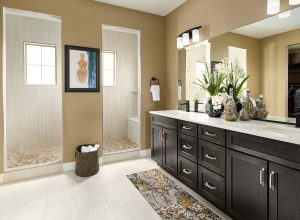 Brookfield Solterra Harvest8 Master Bathroom