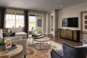 Meritage Harvest Junction Platte Family Room