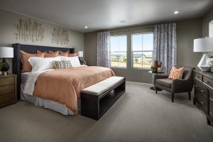 Meritage Senderos Creek Paired Nederland Master Bedroom