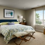Meritage Senderos Clear Creek Castlewood Master Bedroom