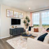 Flatiron Meadows.plan 1963.living Room