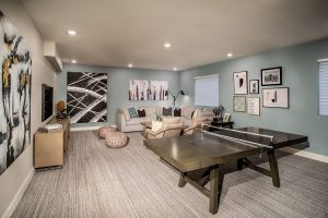 Painted Prairie.ambition.basement