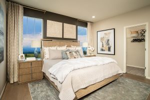 Painted Prairie.ambition.master Bedroom